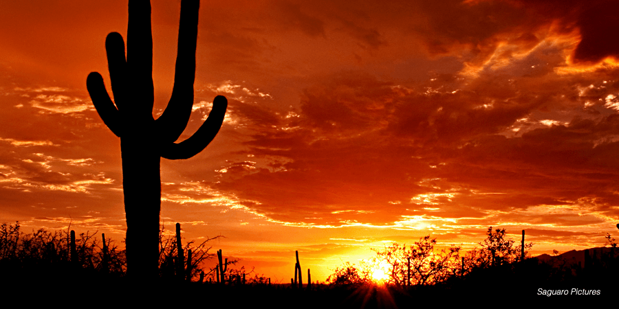 Solar Compromise Reached in Major Arizona Rate Case